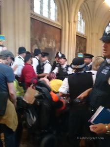 Police_ILF_occupation
